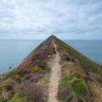 Sharpnose Point